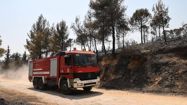 Υπό μερικό έλεγχο η φωτιά στην περιοχή της Πάρνηθας  - Άμεση η κινητοποίηση της Πυροσβεστικής