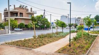 Δύο επιπλέον γειτονιές «πρασινίζουν» με τη δημιουργία πάρκων τσέπης σε Πετρούπολη και Ασπρόπυργο