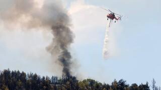 Πυρκαγιά τα ξημερώματα στον Μαραθώνα - Οριοθετήθηκε γρήγορα