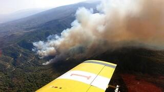 Κύπρος: Μεγάλη φωτιά μαίνεται ανεξέλεγκτη στην Πάφο - Εκκενώθηκε οικισμός