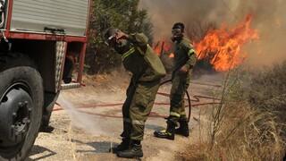 Φωτιά στο Κάτω Νευροκόπι Δράμας: Στη «μάχη» με τις φλόγες επίγεια και εναέρια μέσα