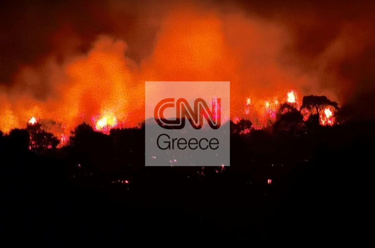 https://cdn.cnngreece.gr/media/news/2021/09/20/282274/photos/snapshot/fotia1.jpg