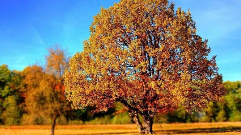 Φθινοπωρινή ισημερία: Ξεκινάει και επίσημα την Τετάρτη το φθινόπωρο