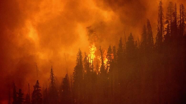 Πρόγραμμα Copernicus: Οι φωτιές του καλοκαιριού προκάλεσαν ρεκόρ εκπομπών διοξειδίου του άνθρακα