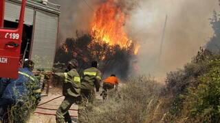 Φωτιά στη Μεγαλόπολη: Απειλούνται σπίτια στον οικισμό Καλύβια - Μήνυμα από το 112