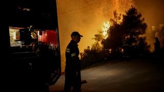 Φωτιά στην Κάρυστο: Καίει σε δύσβατη περιοχή όπου υπάρχουν διάσπαρτα σπίτια
