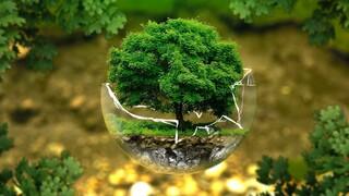 Νέο poll από το Act for Earth: Δράσεις κατά της ρύπανσης και των εκπομπών αερίων, ζητούν οι πολίτες