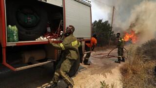 Φωτιά στην περιοχή Άγναντα της Ηλείας: Καίει δύσβατη περιοχή