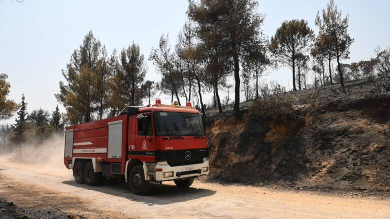 Μεγάλη πυρκαγιά στην Αταλάντη - Επί ποδός ισχυρές πυροσβεστικές δυνάμεις