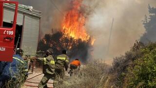 Κιλκίς: Πυρκαγιά σε δύσβατη περιοχή του Δήμου Παιονίας