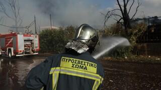Κιλκίς: Ενισχύθηκαν οι δυνάμεις για την πυρκαγιά στο δήμο Παιονίας