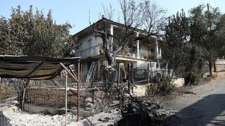 e-ΕΦΚΑ: Οι ευεργετικές ρυθμίσεις για τους πυρόπληκτους της Εύβοιας