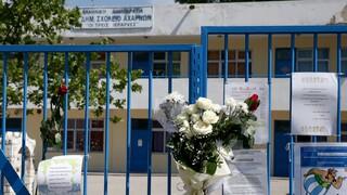 Οικογένεια 11χρονου Μάριου για παρέμβαση Σταϊκούρα: Αποκαθιστάτην εμπιστοσύνηστο κράτος Δικαίου