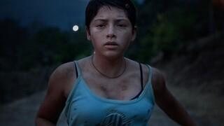 «Νύχτες Πρεμιέρας»: Τα βραβεία του Κινηματογραφικού Φεστιβάλ της Αθήνας