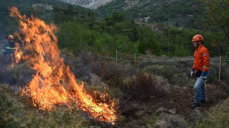 Δασικές Πυρκαγιές: Πρόγραμμα προδιαγεγραμμένης καύσης από WWF Ελλάς και ΙΜΔΟ, με τη στήριξη της P&G