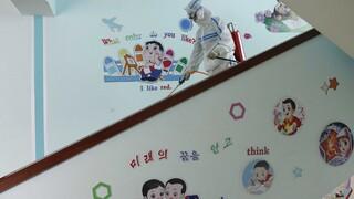 Κορωνοϊός: Ο ΠΟΥ στέλνει ιατρική βοήθεια στη Βόρεια Κορέα