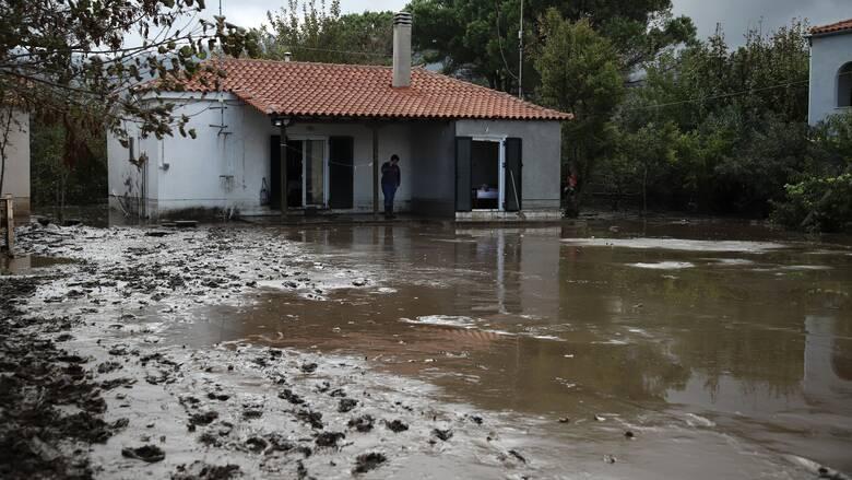 Πλημμύρες Εύβοια - Λέκκας: Δεν έγιναν οι σωστές παρεμβάσεις στα καμένα