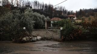 Κακοκαιρία «Μπάλλος»: Ανησυχία για νέες πλημμύρες στην Εύβοια - Εξετάζεται η εκκένωση χωριών