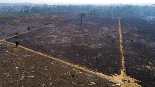 Αποψίλωση Αμαζονίου: Ο Μπολσονάρου κατηγορείται από ΜΚΟ για έγκλημα κατά της ανθρωπότητας