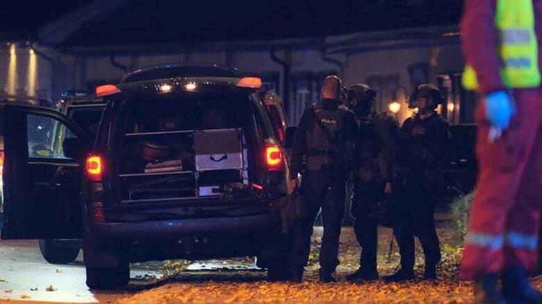 Νορβηγία: «Μοναχικός λύκος» ο δράστης των δολοφονικών επιθέσεων στην Κόνγκσμπεργκ