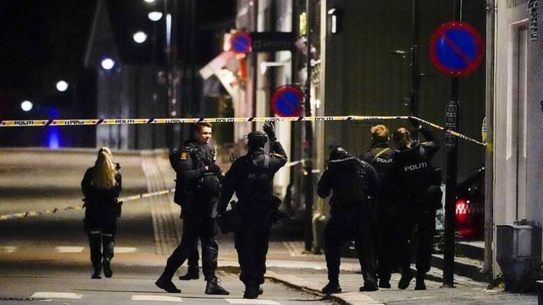 Νορβηγία: Πέντε οι νεκροί από την επίθεση με τόξο και βέλη - Δανός πολίτης ο δράστης