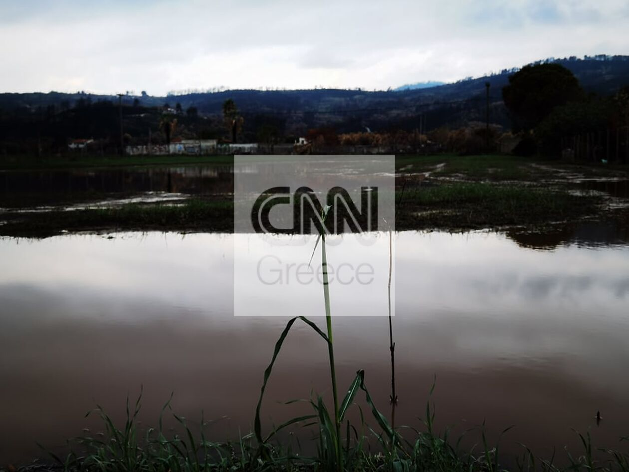 https://cdn.cnngreece.gr/media/news/2021/10/14/285319/photos/snapshot/boreia-euboia-16.jpg