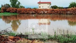 Κακοκαιρία «Μπάλλος: Σε συναγερμό η Εύβοια - Πλημμύρισαν σπίτια, αγνοείται η τύχη 70χρονου