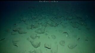 Αρχαιολογία: Σημαντικά ευρήματα σε ναυάγιο κλασικών χρόνων στην Κίσαμο της Νεάπολης (vid)