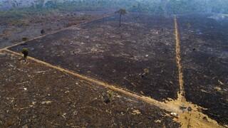COP26: Η Βραζιλία θα ζητήσει αποζημίωση για τη μάχη της κατά της αποψίλωσης του Αμαζονίου