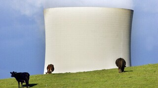 Κλιματική αλλαγή: Η Αυστραλία δεν θέλει να δεσμευτεί στη μείωση των εκπομπών μεθανίου