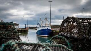 Κλιμακώνεται η ένταση Γαλλίας - Βρετανίας για την αλιεία: Προειδοποίηση σε βρετανικά αλιευτικά